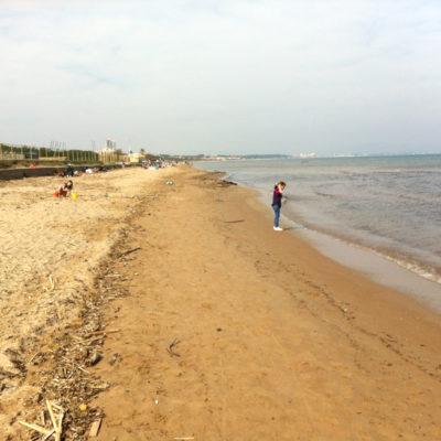Strand Bergerie