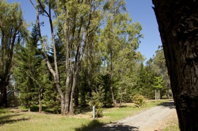 Natur bei Hyères – Strände – umweltfreundlicher und ökologisch sinnvoll geführter Campingplatz