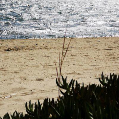 Strand Tamaris