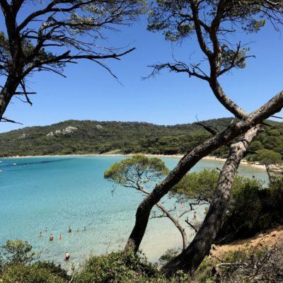 Île de Porquerolles - Iles d'Or - Hyères