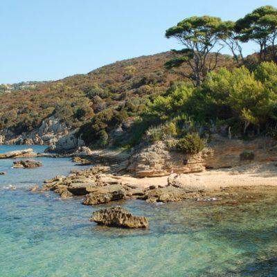 Campingplatz an der Côte d'Azur und in der Nähe von der Insel Le Levant - Hyères