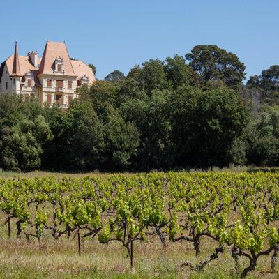 Das Weingut Château des Bormettes