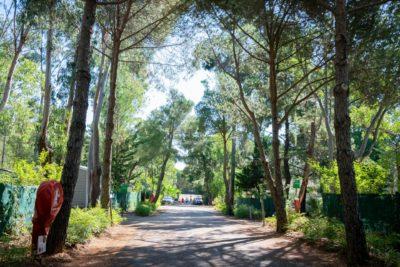 Ein naturnaher und gemütlicher Campingplatz an der Côte d'Azur