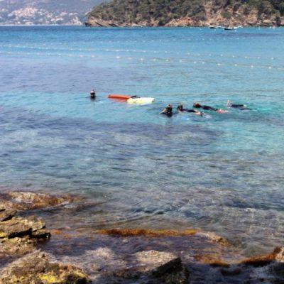 Unterwasserpfad in Rayol
