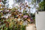 Die Holzhütten stehen im Schatten – Natur in der Provence