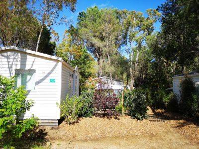 Mobilhaus für günstige Ferien auf einem Campingplatz