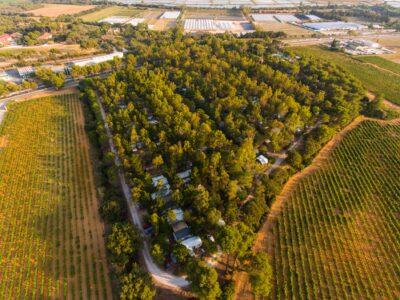 Umweltfreundlicher und naturnaher Campingplatz mit vielen Bäumen in der Nähe von Hyères und den Stränden vom Departement Var